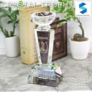 クリスタルトロフィーCR-4
