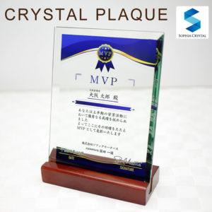ソーダガラス表彰楯DSP-2