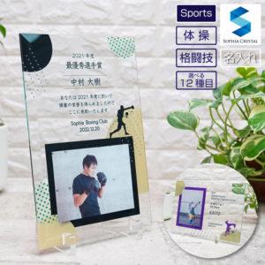 スポーツガラスフォトフレーム体操・格闘技上 DFS-1-sp3