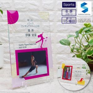 スポーツガラスフォトフレーム冬季スポーツ DFS-1-sp5